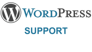 WordPress Theme Setup